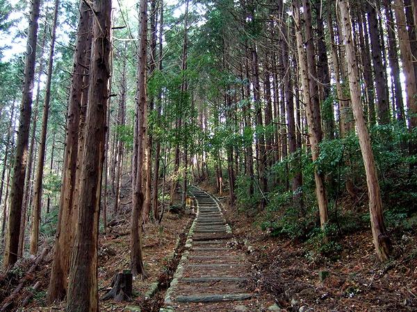 勝尾寺 旧参道