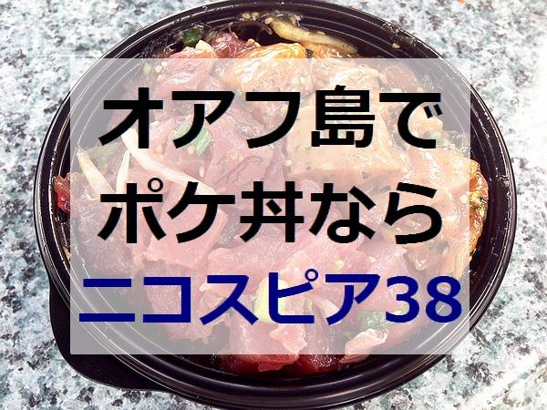ニコスピア38 ポケ丼