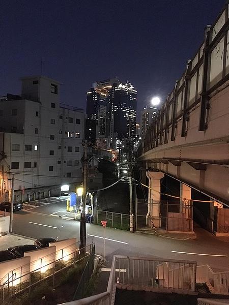 shinjusoohashi15