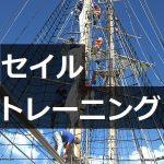 セイルトレーニング 帆船あこがれ