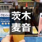 茨木麦音フェスト
