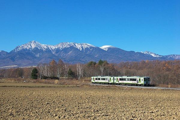 川上村 レタス 長野県